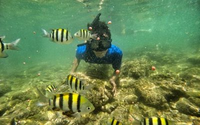 Beautiful Beaches in Gunungkidul Suitable for Traveling